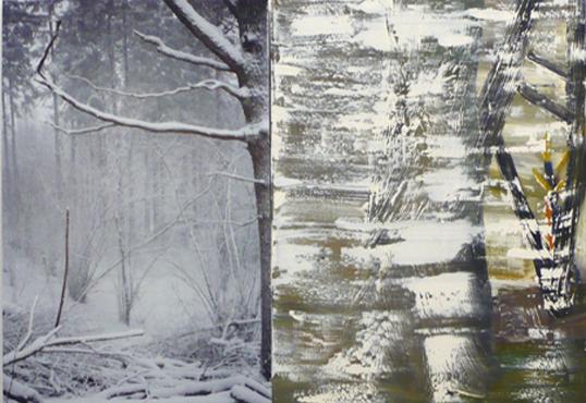 Andreas Eriksson, Foto med grenar och snömålning, 2008