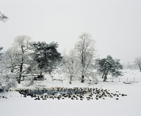 Freezing, 2007, Emma Fredriksson