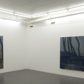 Installation view; LG Lundberg Galleri Flach, 2009