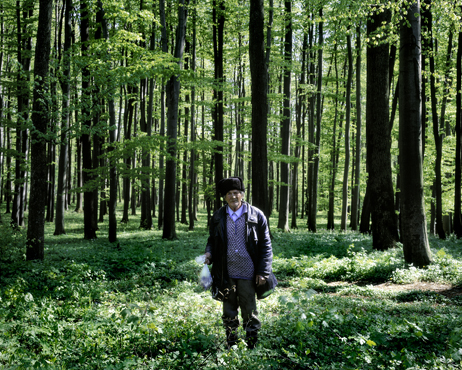 Remus, 2008, Ville Lenkkeri