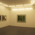 Installation view, 2011, Galleri Flach