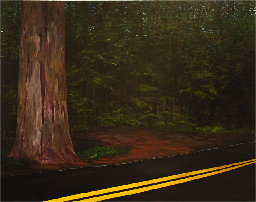 Redwoodsforest, 2015, Patric Larsson