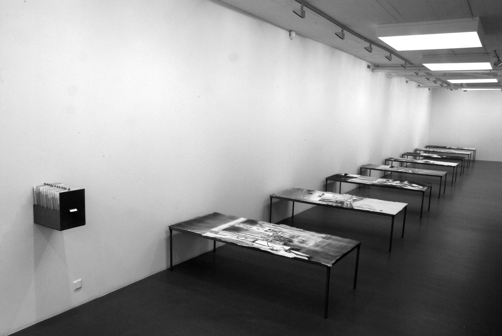 "Kristina Bength, ""Amanda Kristina Pedersen's Physiognomical Inquiries"" 2011, Installation view, 2011"