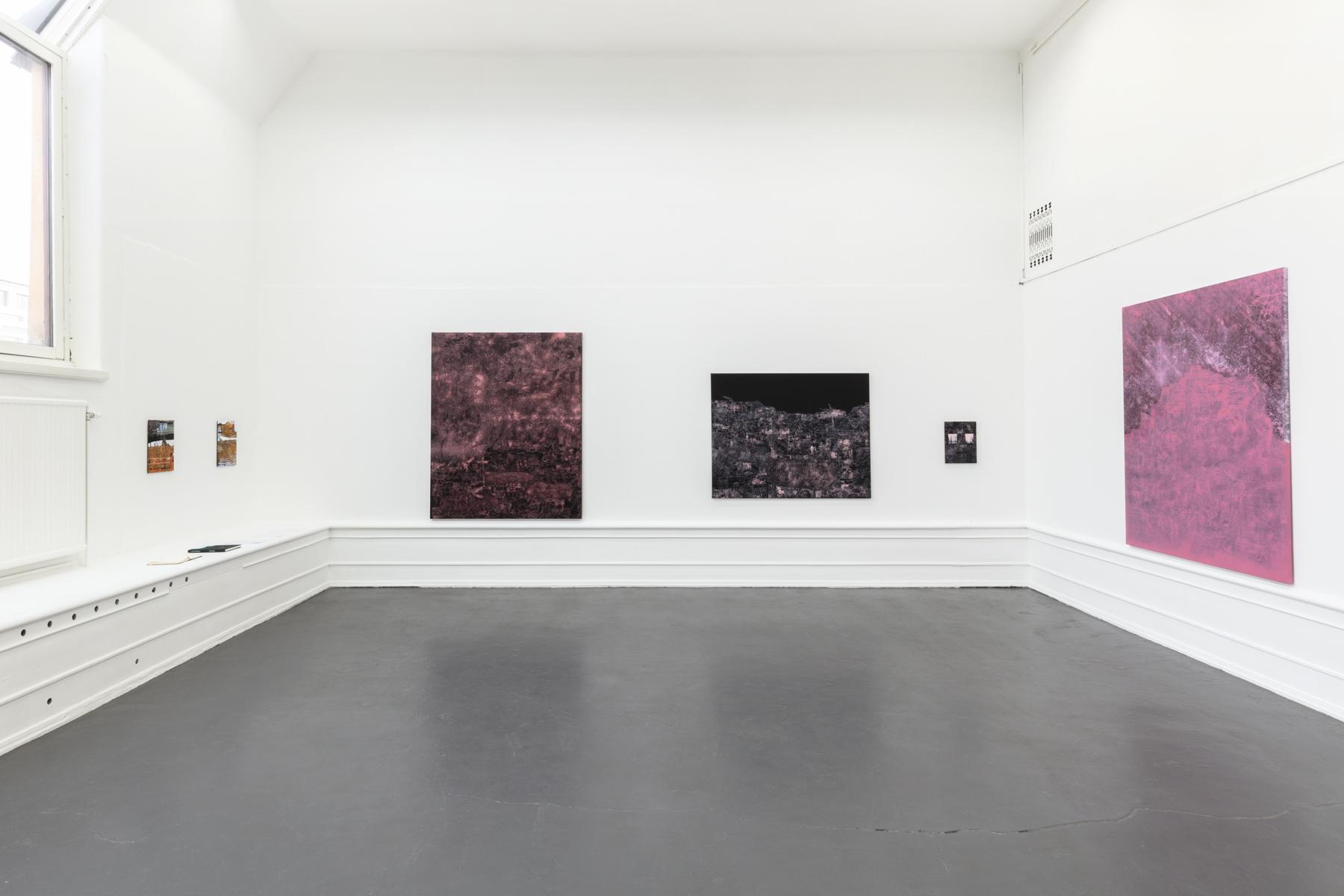 """Lisa D Manner, """"Long Wave"""", 2020. Installation view: Stellar, 2020, Take off, 2020, Thermal, 2020, Scarlet Lake, 2020, Galleri Flach"""