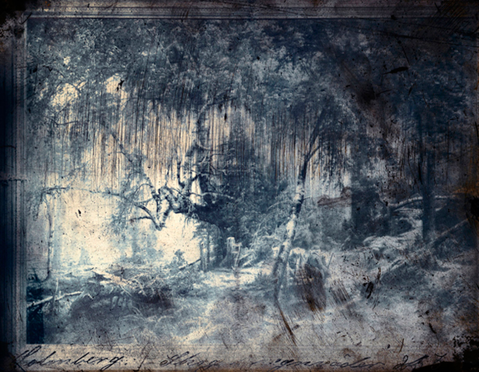 "Jorma Puranen, ""Forest in Rain"", 2013, digital c-print, diasec, wooden frame 123 x 157 cm"